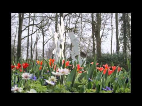 Art Keukenhof 2012 - Amsterdam - Holland - Robert Pennekamp