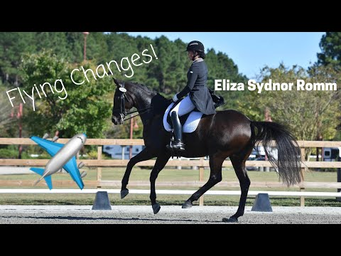 FLYING CHANGES discussion with Grand Prix dressage trainer Eliza Sydnor Romm