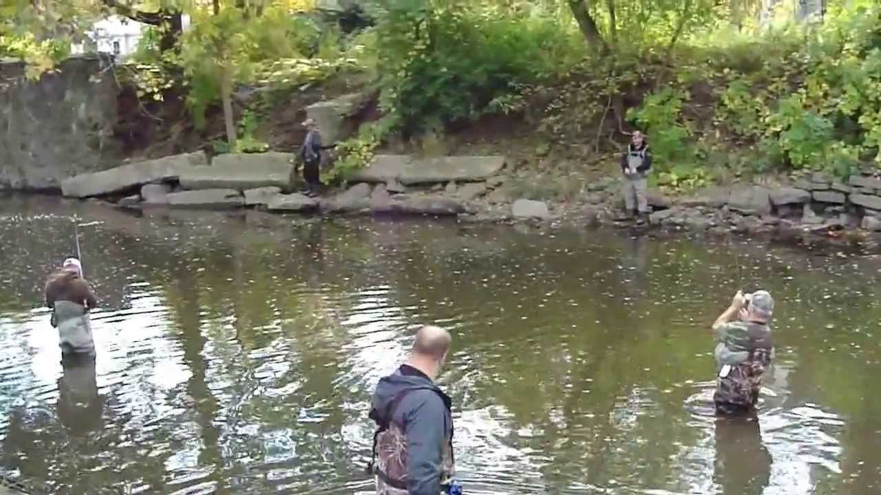 Fall fishing on the root river racine wi youtube for Wisconsin out of state fishing license