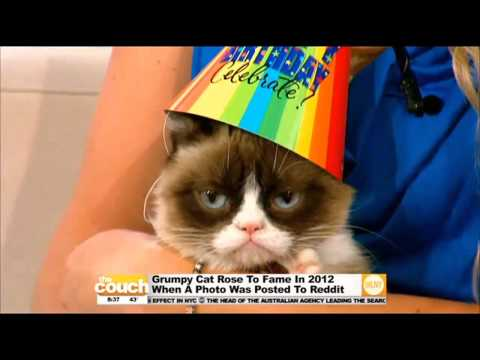 Download grumpy cat happy birthday song free online mp3 happy birthday grumpy cat bookmarktalkfo Image collections