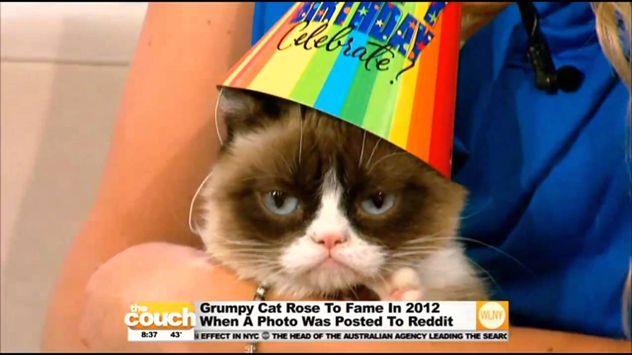 Happy birthday grumpy cat youtube bookmarktalkfo Image collections