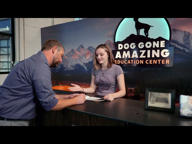 Dog Gone Amazing - Dog Training In Reno, NV