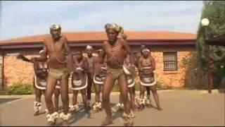 shalaxo afrikuli (African Shalakho) шалахо