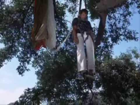 Steve Trevor Parachute KO