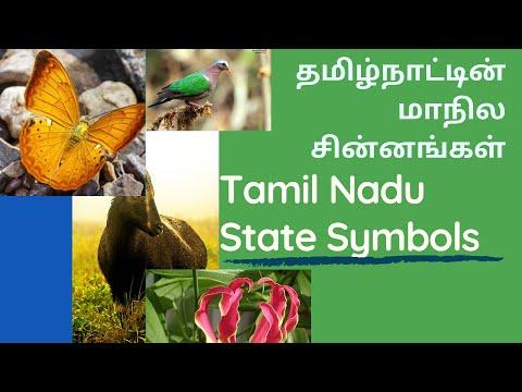 தமிழ்நாட்டின் மாநில சின்னங்கள் | Tamil Nadu State Symbols | Tamil Nadu GK | State Symbol List