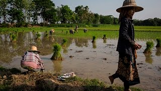 Healthy villages in Myanmar's Dry Zone