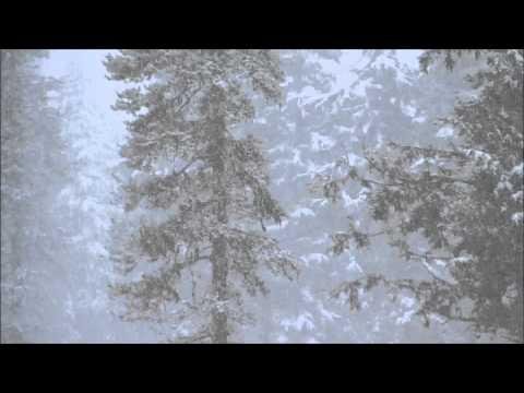 Ziua şi melodia: Nicu Alifantis - Decembre