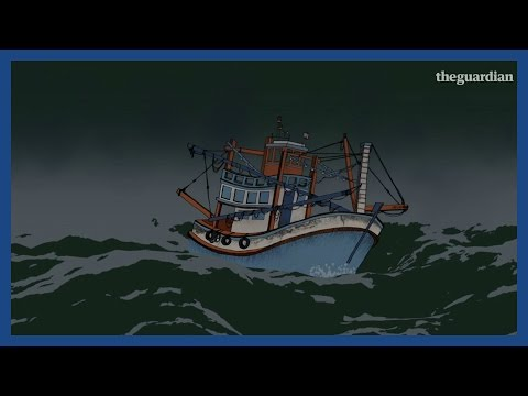Slavery, Murder & Suicide In Thailand's Fishing Industry | Guardian Animations