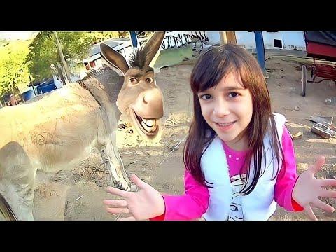 ENCONTREI O BURRO DO SHREK!?! ★ Vlog na Fazendinha, Animais e Arvorismo ★ Férias de Inverno 2016