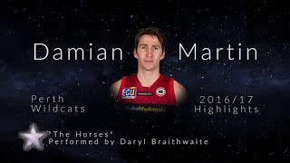 Damian Martin highlights 2016/17