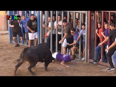 Encierros y suelta de Vacas - Roser 2017 - Almassora (Castellon) Bous Al Carrer [Toros FJGNtv]