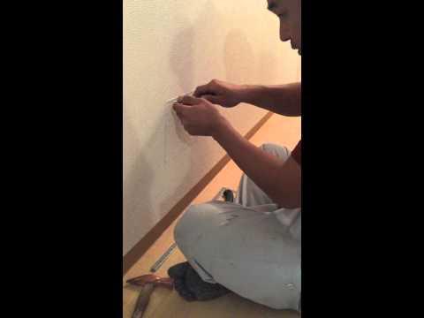 壁の中から子猫の鳴き声?大工さんに壁をくり抜いてもらったら…