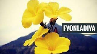 """Fyonladiya"" Original Old Garhwali Song from 1990s"