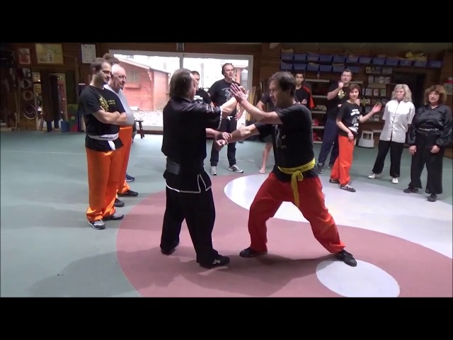 Grandmaster Walter Toch on a sunday morning with Chinese Selfdefence