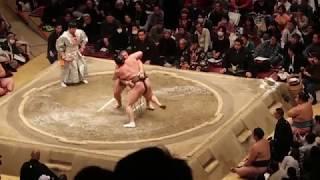 2019年2月10日に行われた第43回大相撲トーナメントの2回戦 栃煌山‐白鵬...