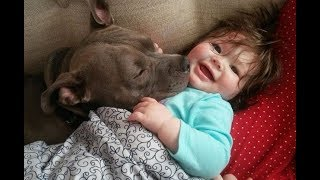 Cute Babies Cuddling Pets  - Funny Baby and Animals Compilation