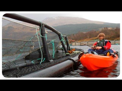 Kayak Fishing adventure on Loch Etive