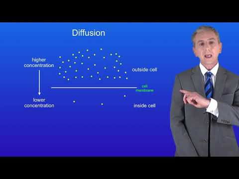 GCSE Science Biology (9-1) Diffusion