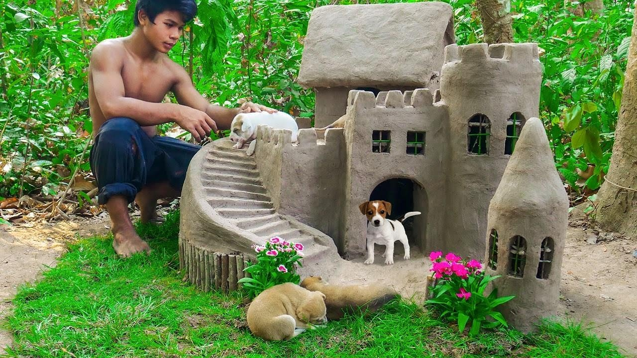 Puppies Rescued From Jungle PIT Building Dog Castle For Puppies