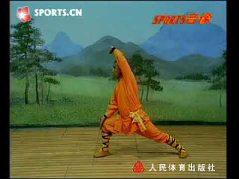 Shaolin small flood kung fu