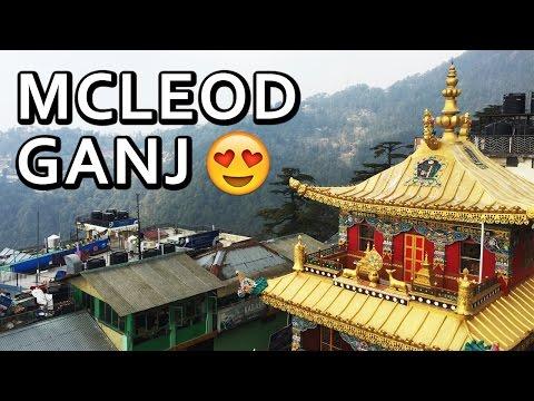 Amazing McLeodGanj Trip in 3 Minutes | Dharamshala Himachal