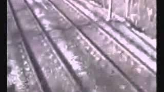 Phim | những pha tai nạn nguy hiểm | nhung pha tai nan nguy hiem
