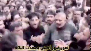 تعور ضهر اخيتك صعدت الناگه // عبد الحسين الزيرجاوي
