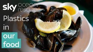 Plastics in our food | #OceanRescue
