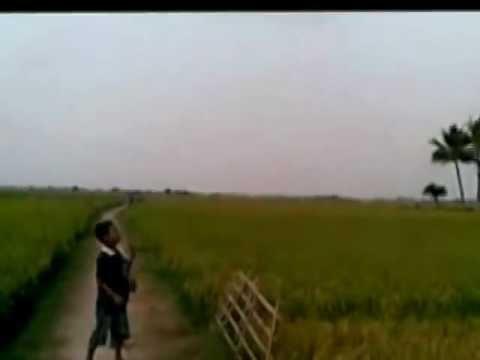 desa iwan fals