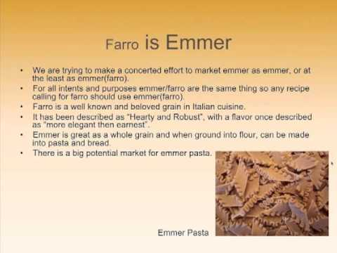 "The ""Ancient"" Grains: Emmer, Einkorn and Spelt Webinar"