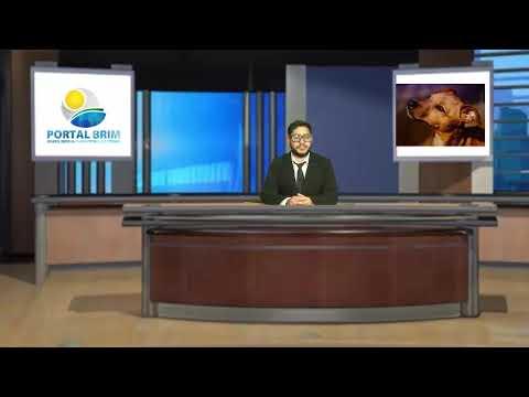 Repórter Portal BRIM - 181ª Edição