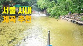 39계곡 철인4종 경기39가 펼쳐진 서울 시내 계곡 추…