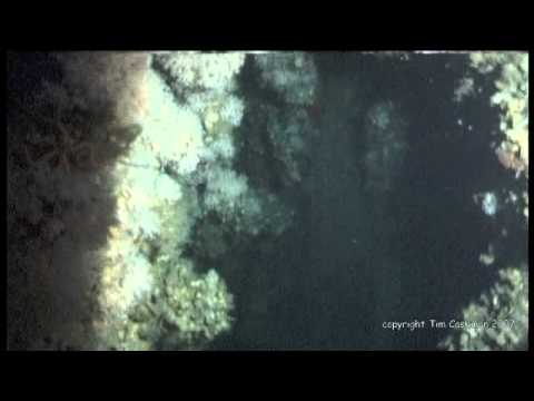 Rms Carpathia Wreck Diving Expedition 2007 Youtube