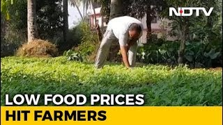 As Inflation Falls, Low Food Prices Hit Farmers