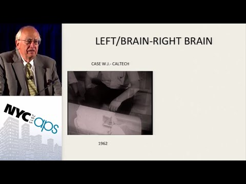 APS Award Address: Lessons Learned From Split-Brain Research