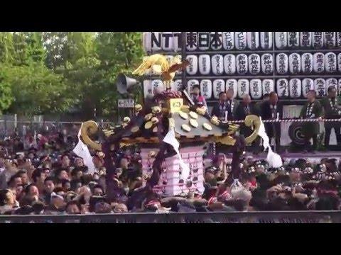 平成28年 浅草神社  三社祭り「宮出し」 一般の宮出し 三基宮神輿。