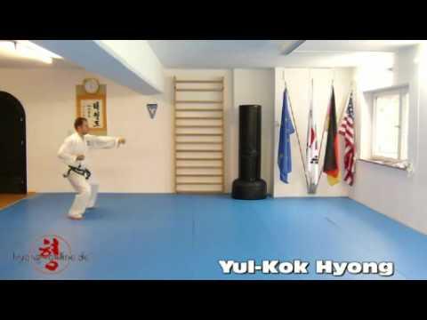 yul-kok-hyong-seitenansicht---taekwon-do-salzburg,-traunreut-und-traunstein