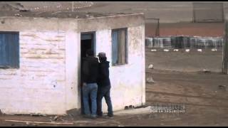 Aliados Por La Seguridad: Los Injertos del Sur 03/11/2013