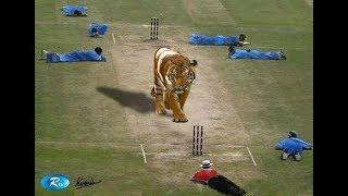 whatsapp funny videos 2016 2015 - cricket funny fail clip ever - whatsapp funny videos.mp4