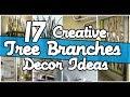 17  Creative Tree Branches Decor Ideas