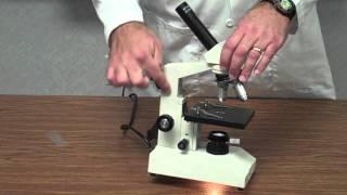 현미경을 사용하는 방법