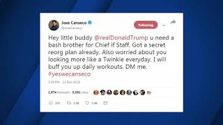 Jose Canseco wants to be President Trump's next Chief of Staff