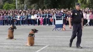 Jornada de puertas abiertas en la Escuela de Policía