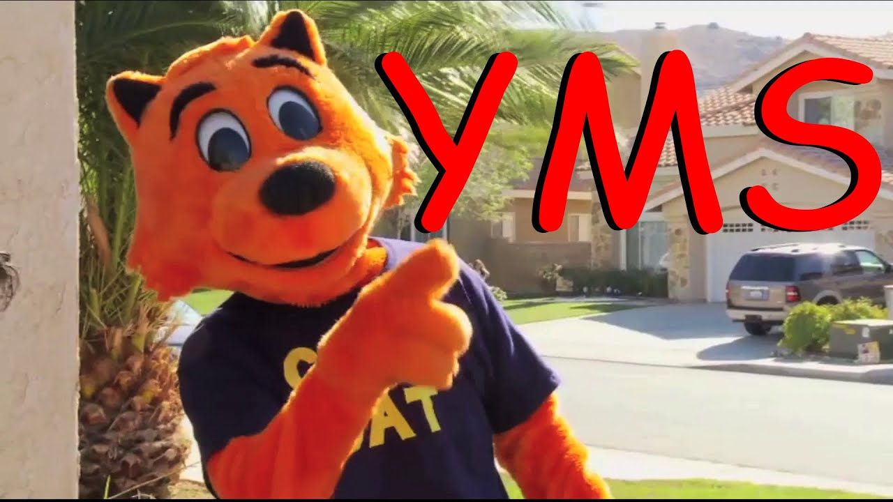 614e3e13 YMS: Cool Cat Saves the Kids (Part 1 of 2) - YouTube