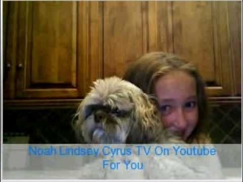 Noah Lindsey Cyrus  TV