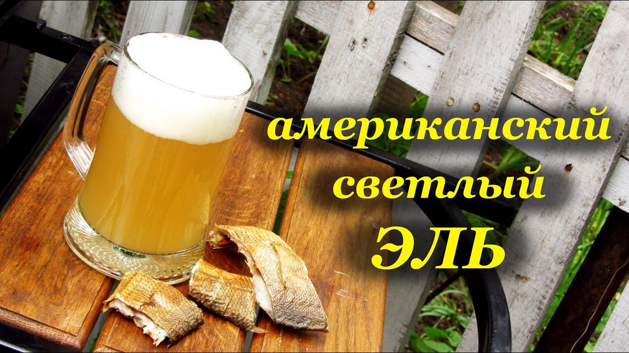 в пива условиях зернового Рецепты домашних