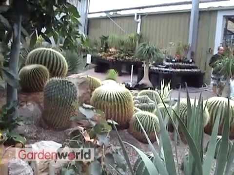 Melbourne Garden World