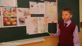 Проект  по русскому языку