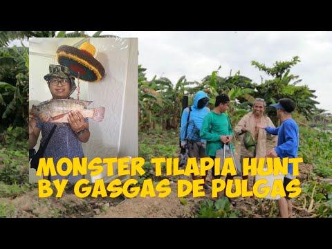 Hunting The Monster Tilapia In Pasig River   Fishing Sa C6