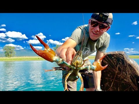 GIANT CRAWDADS! North Idaho LOBSTERS!! Catch And Cook - Limitless 52